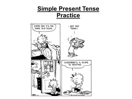 Simple Present Tense Practice. Present Simple Sentences - Affirmative 1 David / hate / alcohol 2 my / play / brothers / basketball 3 teacher / my / like.