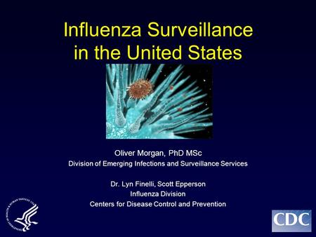 Influenza Surveillance in the United States Oliver Morgan, PhD MSc Division of Emerging Infections and Surveillance Services Dr. Lyn Finelli, Scott Epperson.