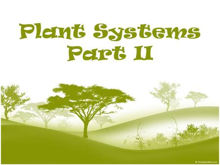 Plant Systems Part II. Plant Tissues A tissue is a group of cells working together to perform a similar function. – The cells in tissues are specialized.