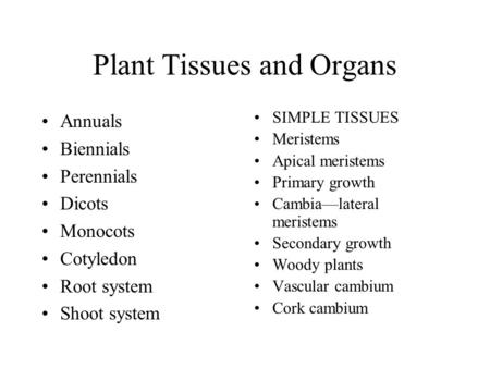 Plant Tissues and Organs Annuals Biennials Perennials Dicots Monocots Cotyledon Root system Shoot system SIMPLE TISSUES Meristems Apical meristems Primary.