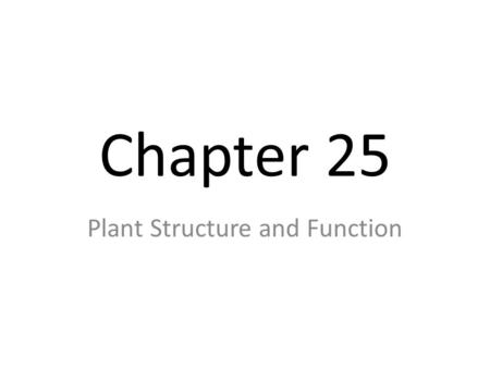 "Chapter 25 Plant Structure and Function. I. Tissues A. Dermal Tissue Covers the outside of a plant's body as protection Forms a ""skin"" called the epidermis."