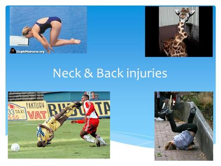 Neck & Back injuries.  C3-5 keep the diaphragm alive  Head is heavy Physiology.