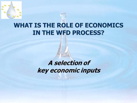WHAT IS THE ROLE OF ECONOMICS IN THE WFD PROCESS? A selection of key economic inputs.