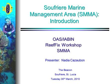 Soufriere Marine Management Area (SMMA): Introduction