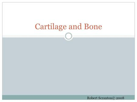 Cartilage and Bone Robert Scranton© 2008. Cartilage Few or many cells? Cell name? Vascular? The dense CT covering is _________, except for around __________.