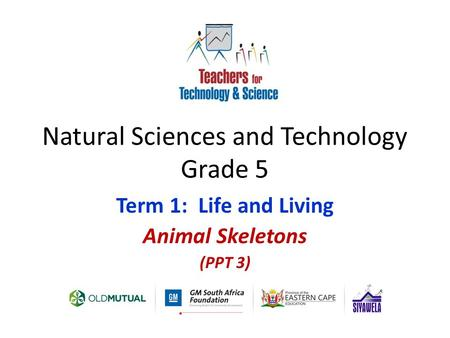 Natural Sciences and Technology Grade 5 Term 1: Life and Living Animal Skeletons (PPT 3)