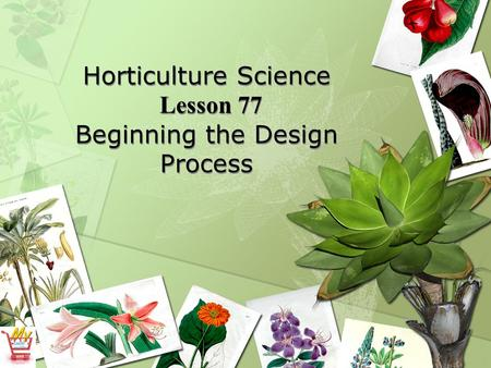 Horticulture Science Lesson 77 Beginning the Design Process.