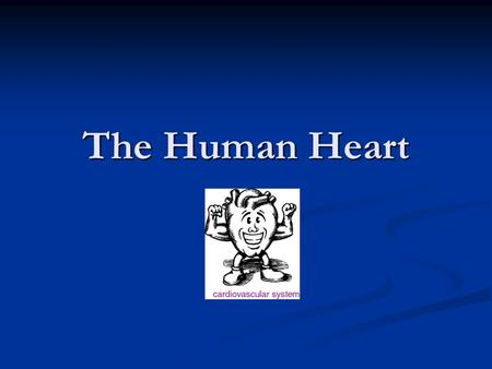 The Human Heart. Parts of the Internal Heart 1111 2222 3333 4444 5555 6666 7 8 9 10 11.