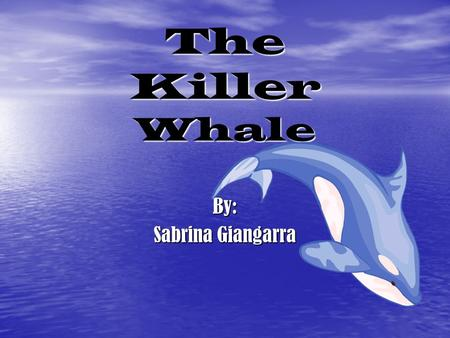 The Killer Whale By: Sabrina Giangarra. Scientific Name The scientific name for the killer whale is Orcinus Orca. Derived from the Latin word orcas-meaning.