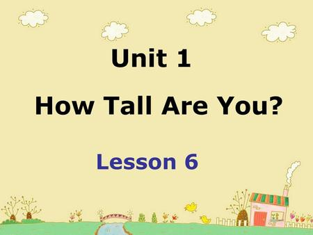 How Tall Are You? Unit 1 Lesson 6. Killer Whale Sperm Whale.