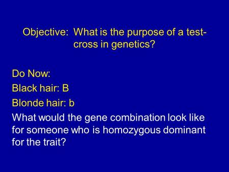 Objective: What is the purpose of a test- cross in genetics? Do Now: Black hair: B Blonde hair: b What would the gene combination look like for someone.