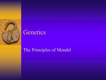 "Genetics The Principles of Mendel. Beginnings  1886- Mendel proposes the particulate model of inheritance.  This model replaces the earlier ""blending"""