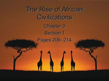 The Rise of African Civilizations Chapter 3 Section 1 Pages 206- 214.