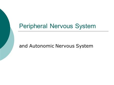 Peripheral Nervous System and Autonomic Nervous System.