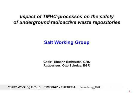 Salt Working Group TIMODAZ - THERESA Luxembourg_2009 1 Impact of TMHC-processes on the safety of underground radioactive waste repositories Salt Working.