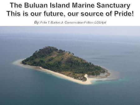 THE BIOLOGICAL AND ECONOMIC IMPORTANCE OF THE 63.16 HECTARE BULUAN ISLAND MARINE SANCTUARY and why the need to protect it! Home to the endangered giant.