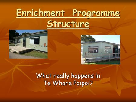 Enrichment Programme Structure What really happens in Te Whare Poipoi?