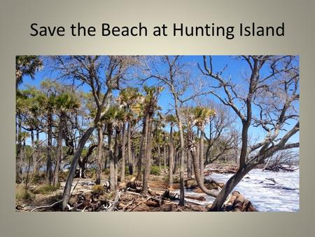 Save the Beach at Hunting Island. Save the Hunting Island Lighthouse.