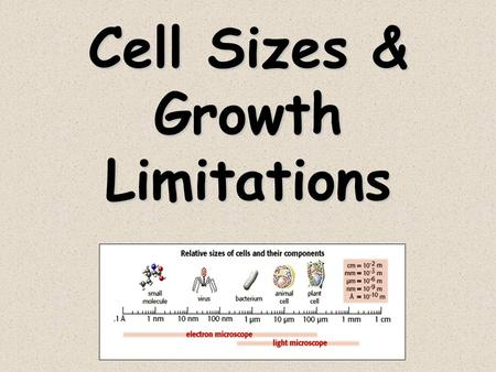Cell Sizes & Growth Limitations