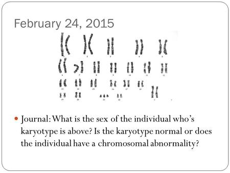 February 24, 2015 Journal: What is the sex of the individual who's karyotype is above? Is the karyotype normal or does the individual have a chromosomal.