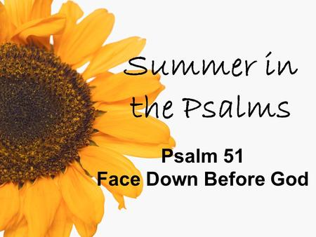Summer in the Psalms Psalm 51 Face Down Before God.