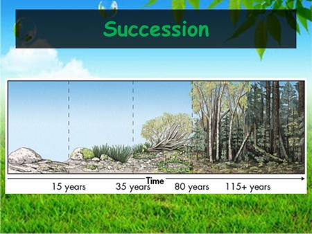 Succession. Describe how ecosystems recover from a disturbance. Compare succession after a natural disturbance with succession after a human caused disturbance.