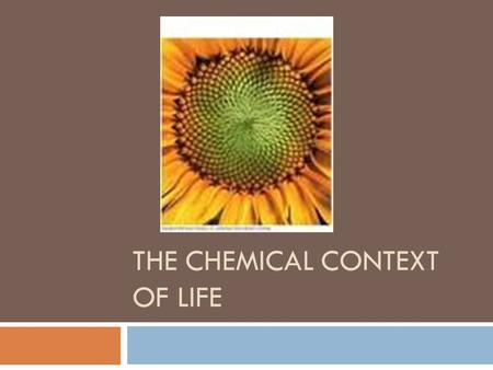 THE CHEMICAL CONTEXT OF LIFE. Key Concepts  Matter Consists of chemical elements in pure form and in combinations called compounds.  An elements properties.