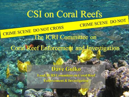 CSI on Coral Reefs CRIME SCENE DO NOT CROSSCRIME SCENE DO NOT Dave Gulko Lead, ICRI Committee on Coral Reef Enforcement & Investigation The ICRI Committee.