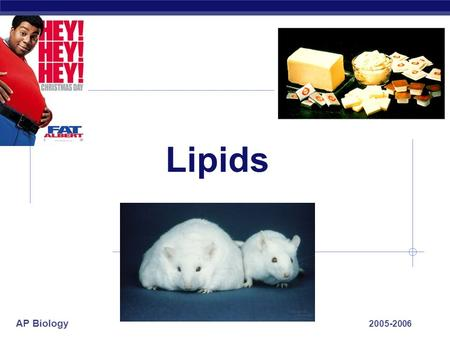 AP Biology 2005-2006 Lipids. AP Biology 2005-2006 Lipids  Lipids are composed of C, H, O  long hydrocarbon chain  Diverse group  fats  phospholipids.