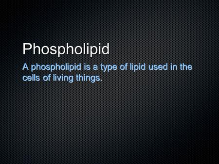 Phospholipid A phospholipid is a type of lipid used in the cells of living things.