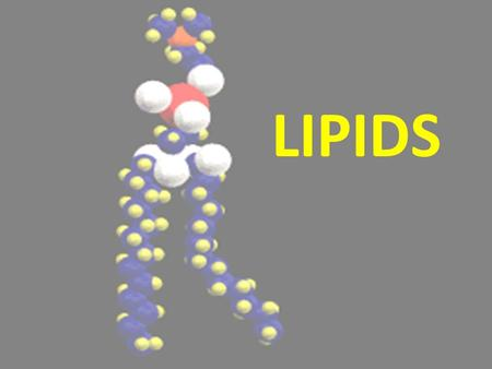 LIPIDS 1. ELEMENTS FOUND IN LIPIDS CARBON (C) HYDROGEN (H) OXYGEN (O) Sound familiar? These are the same elements found in carbohydrates! So … what do.