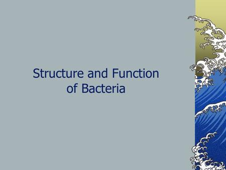 Structure and Function of Bacteria. Kingdom Archaebacteria Extreme environments Methanogens – Make methane gas, anerobic Halophiles – salt loving, use.