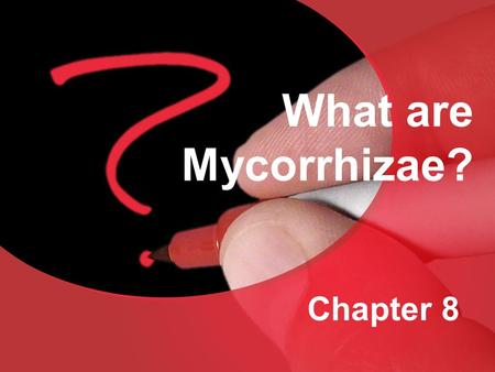What are Mycorrhizae? Chapter 8.