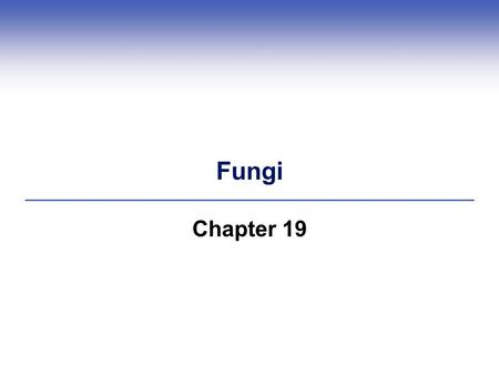 Fungi Chapter 19. 24.1 Fungal Traits and Classification  Fungi are heterotrophs that obtain nutrition from their environment by extracellular digestion.