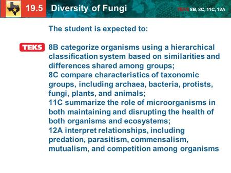 19.5 Diversity of Fungi TEKS 8B, 8C, 11C, 12A The student is expected to: 8B categorize organisms using a hierarchical classification system based on similarities.
