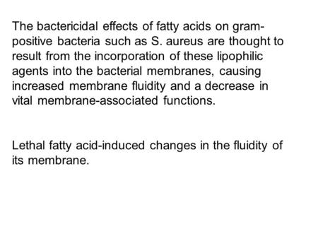 The bactericidal effects of fatty acids on gram- positive bacteria such as S. aureus are thought to result from the incorporation of these lipophilic agents.
