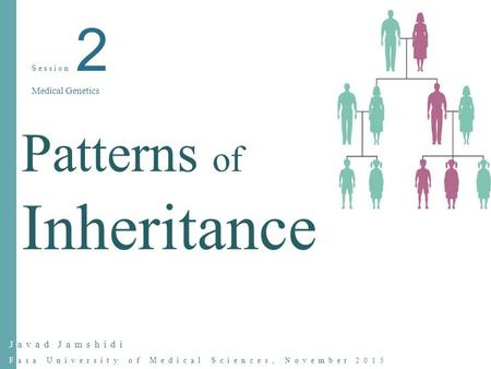 Javad Jamshidi Fasa University of Medical Sciences, November 2015 Session 2 Medical Genetics Patterns of Inheritance.
