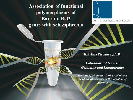 Association of functional polymorphisms of Bax and Bcl2 genes with schizophrenia Kristina Pirumya, PhD, Laboratory of Human Genomics and Immunomics Institute.