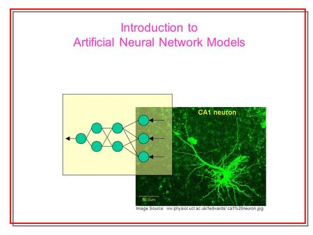 Introduction to Artificial Neural Network Models Image Source: ww.physiol.ucl.ac.uk/fedwards/ ca1%20neuron.jpg.
