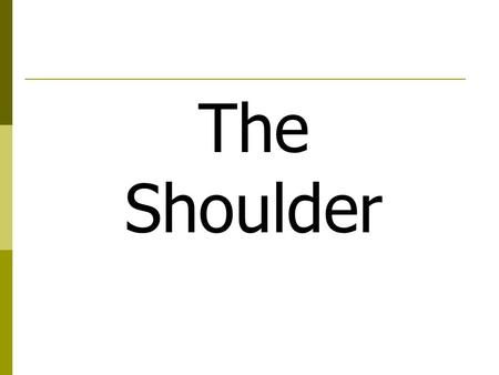 The Shoulder. Things to know  3 views AP, Lateral, Transthoracic  10 x 12 cassette  Marker  Shield  Collimation  Measures 12 on AP and Lateral 