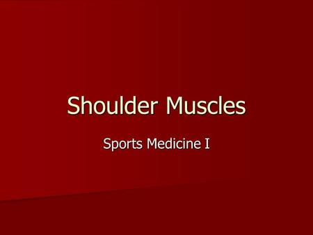 Shoulder Muscles Sports Medicine I.