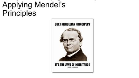 Chapter 11.2 (Pg. 313-318): Applying Mendel's Principles.