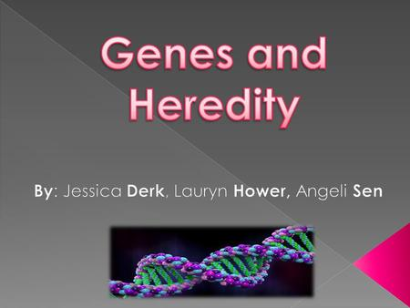  Genes are: Nucleotides transferred from parent to offspring that play a role in determining genotypic and phonotypical outcomes  Heredity is: Acquiring.