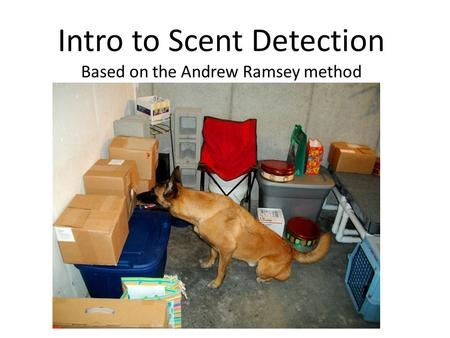 Intro to Scent Detection Based on the Andrew Ramsey method.