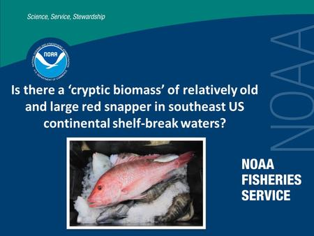 Is there a 'cryptic biomass' of relatively old and large red snapper in southeast US continental shelf-break waters?