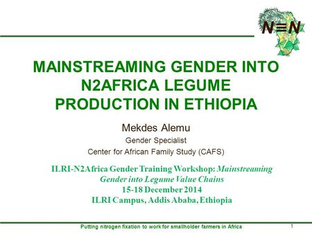 Putting nitrogen fixation to work for smallholder farmers in Africa MAINSTREAMING GENDER INTO N2AFRICA LEGUME PRODUCTION IN ETHIOPIA Mekdes Alemu Gender.