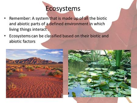Ecosystems Remember: A system that is made up of all the biotic and abiotic parts of a defined environment in which living things interact. Ecosystems.
