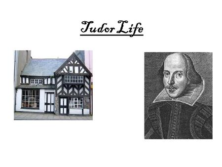 Tudor Life. Queen Elizabeth The first Queen Elizabeth I Died on 24 March 1603 (of blood poisoning) - she was nearly70 years of age Queen Elizabeth I Reigned.