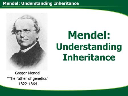 "Mendel: Understanding Inheritance Gregor Mendel ""The father of genetics"" 1822-1864."