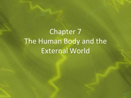 Chapter 7 The Human Body and the External World. The Nervous System.